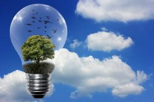 free Energy Energie